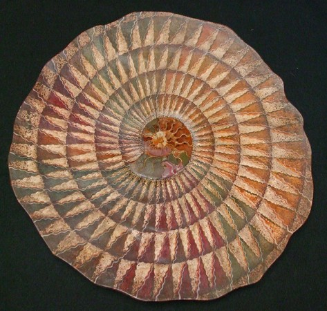 """Autumn Colors"" Ammonite Fossil wall sculpture, 24"" x 2"", Mixed media : Wall Sculpture : Fossil and organic mixed media sculpture by Lee Brotherton"